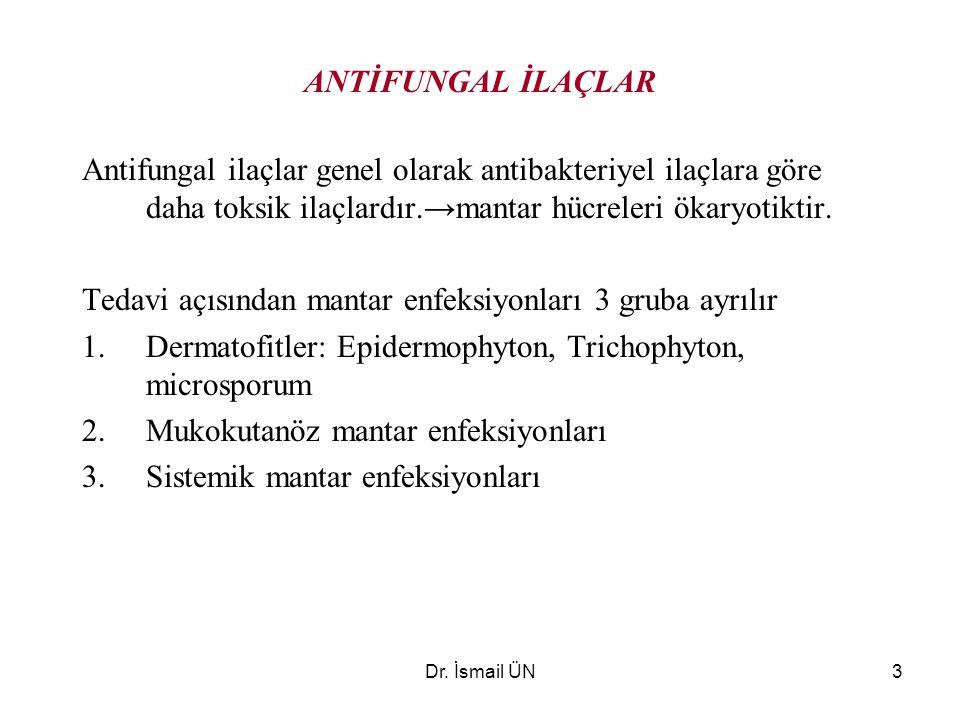 Dr. İsmail ÜN3 ANTİFUNGAL İLAÇLAR Antifungal ilaçlar genel olarak antibakteriyel ilaçlara göre daha toksik ilaçlardır.→mantar hücreleri ökaryotiktir.