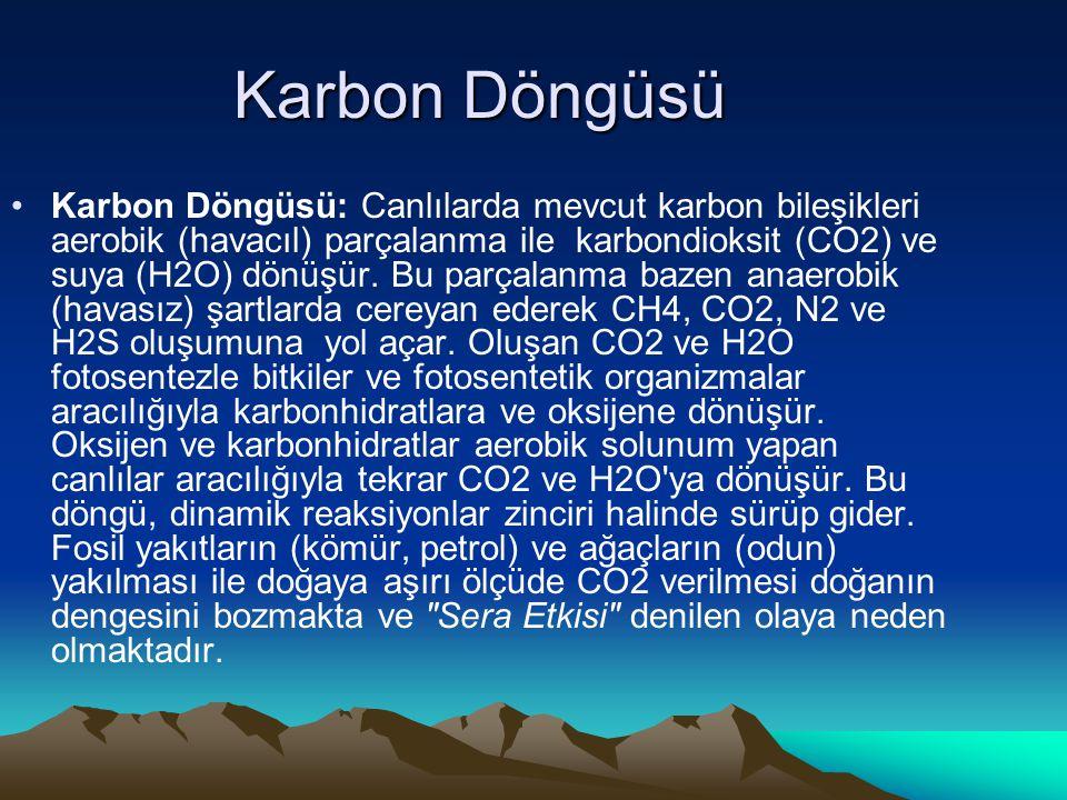 Karbon Döngüsü Karbon Döngüsü: Canlılarda mevcut karbon bileşikleri aerobik (havacıl) parçalanma ile karbondioksit (CO2) ve suya (H2O) dönüşür. Bu par