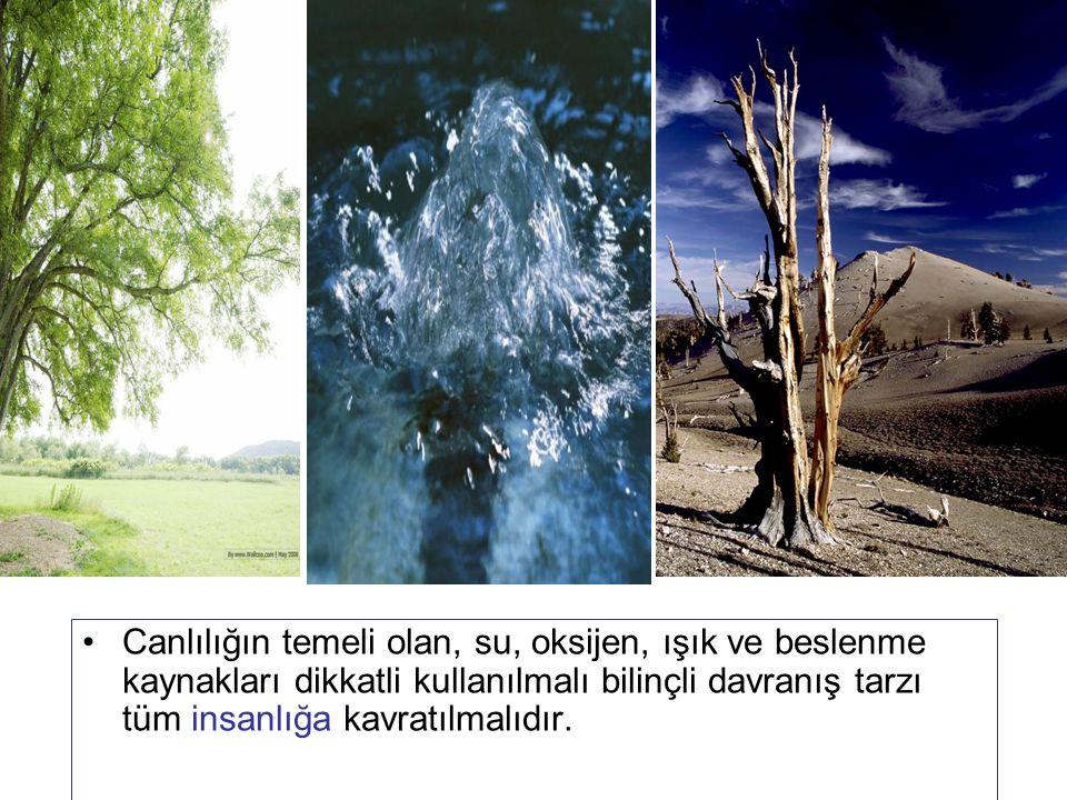 Canlılığın temeli olan, su, oksijen, ışık ve beslenme kaynakları dikkatli kullanılmalı bilinçli davranış tarzı tüm insanlığa kavratılmalıdır.