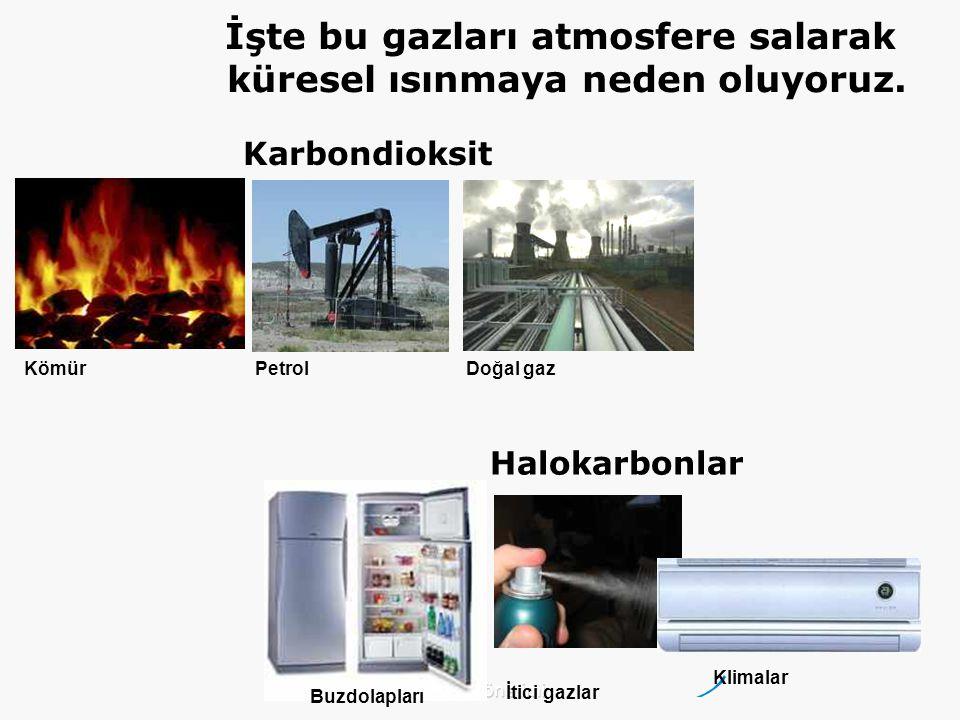 Çevre Yönetimi Kömür PetrolDoğal gaz Karbondioksit Halokarbonlar Buzdolapları İtici gazlar Klimalar İşte bu gazları atmosfere salarak küresel ısınmaya neden oluyoruz.