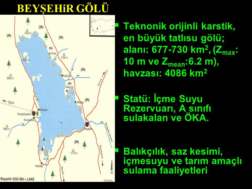  Teknonik orijinli karstik, en büyük tatlısu gölü; alanı: 677-730 km 2, (Z max : 10 m ve Z mean :6.2 m), havzası: 4086 km 2  Statü: İçme Suyu Rezerv