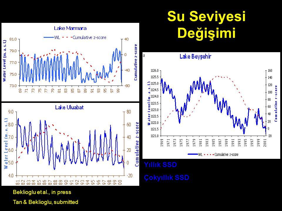 Su Seviyesi Değişimi Yıllık SSD Çokyıllık SSD Beklioglu et al., in press Tan & Beklioglu, submitted