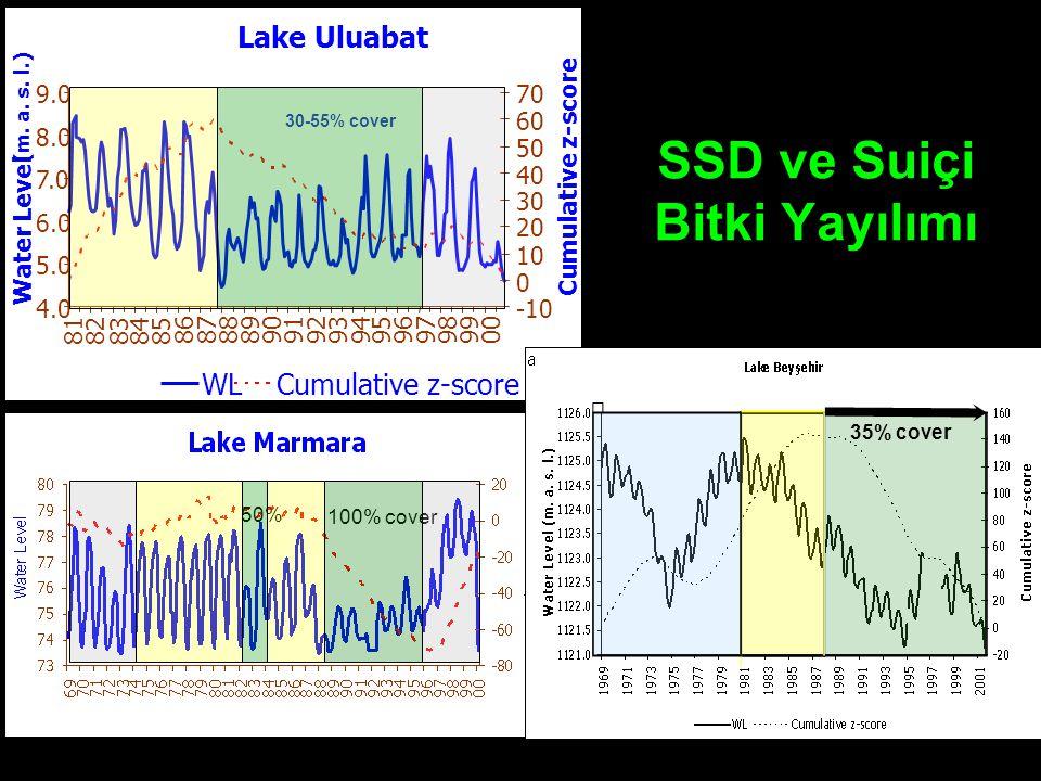 Lake Uluabat 4.0 5.0 6.0 7.0 8.0 9.0 818283 8485 86 87888990 91929394 95 96 97 989900 Water Level (m. a. s. l.) -10 0 10 20 30 40 50 60 70 Cumulative