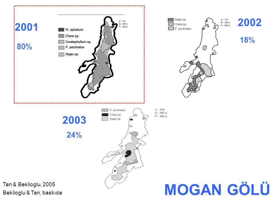 2001 2003 2002 24% 80% 18% Tan & Beklioglu, 2005 Beklioglu & Tan, baskıda MOGAN GÖLÜ