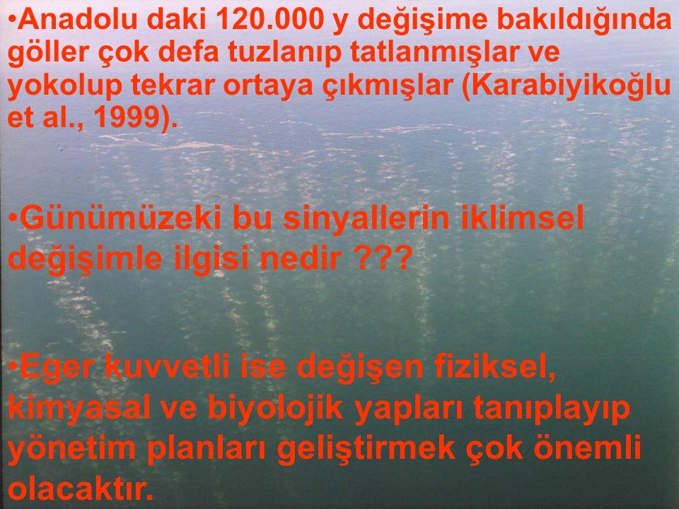 Anadolu daki 120.000 y değişime bakıldığında göller çok defa tuzlanıp tatlanmışlar ve yokolup tekrar ortaya çıkmışlar (Karabiyikoğlu et al., 1999). Gü