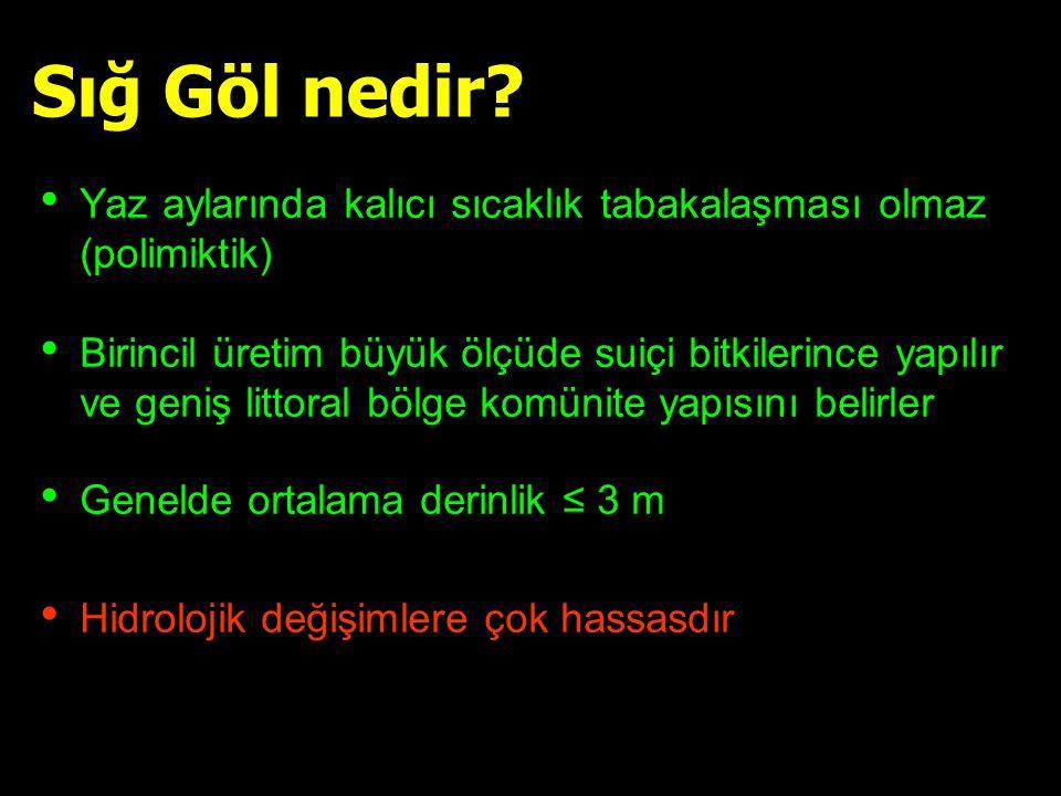 Binary logistik regresyon SS ve Suiçi bitkileri binary indeksi Marmara Gölü r:-0.384, p<0.001 n:356 Uluabat Gölü r:-0.414, p<0.001 n:192 Beyşehir Gölü r: -0.84, p<0.001, n=273 Beklioglu et al., in press Tan & Beklioglu, submitted