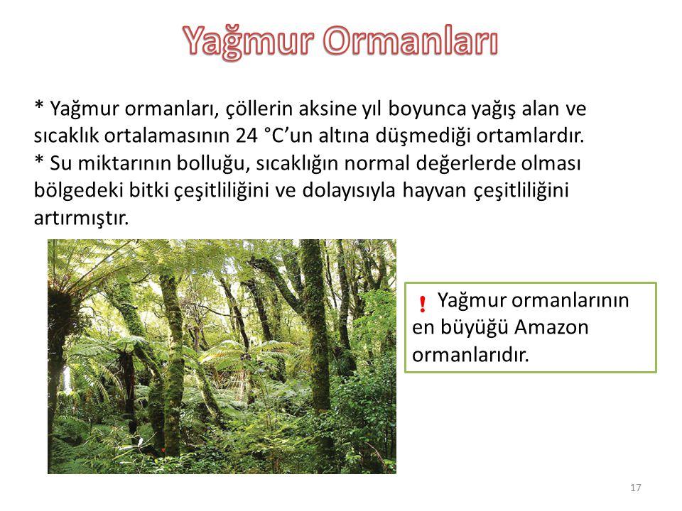 * Yağmur ormanları, çöllerin aksine yıl boyunca yağış alan ve sıcaklık ortalamasının 24 °C'un altına düşmediği ortamlardır. * Su miktarının bolluğu, s