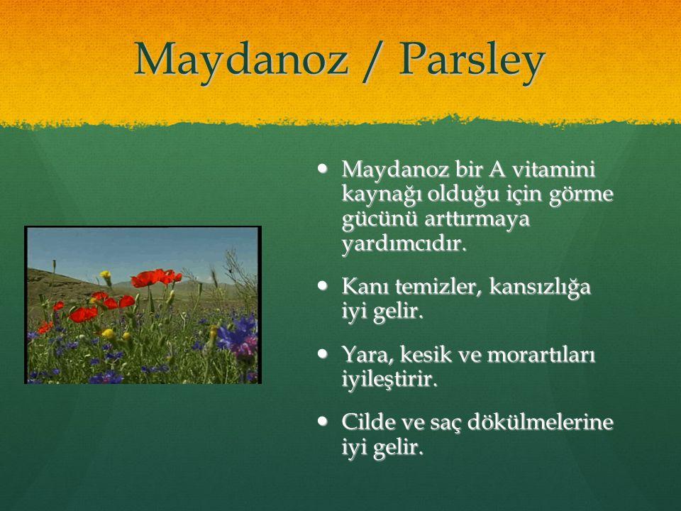 Maydanoz / Parsley Maydanoz bir A vitamini kaynağı olduğu için görme gücünü arttırmaya yardımcıdır. Maydanoz bir A vitamini kaynağı olduğu için görme