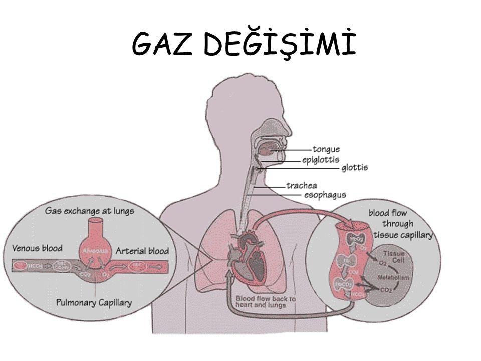 KAN GAZI CİHAZI kandaki elektrolitleri (Na, K, Ca, Cl), kısmi oksijen basıncını(PO2), kısmi karbondioksit basıncını(PCO2), pH, hemoglobin seviyesini tesbit eder.