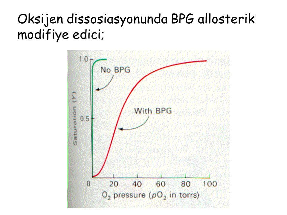 Oksijenasyon göstergeleri O 2 saturasyonu –Oksijenlenmiş Hb/Total Hb –%93-98 pO 2 –Kanda çözünmüş olan O 2 basıncı –70-100 mmHg Alveoloarteryel O 2 gradyenti –Alveollerdeki O 2 basıncı – arteryel O 2 basıncı –AC'in gaz değişimi hakkında fikir verir –7-14 mmHg –Dışardan O 2 desteğinde , AC problemlerinde 