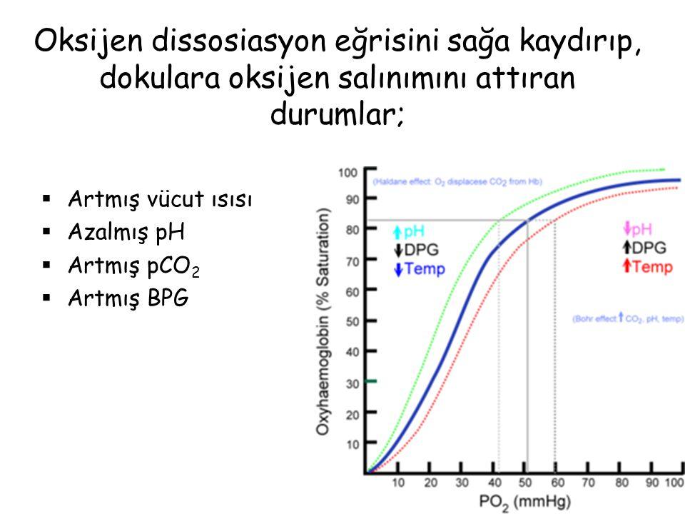 pH'nın dissosiasyon eğrisi üzerine olan etkisine Bohr etkisi denir ve Hb'in tamponlama kapasitesiyle ilişkilidir;