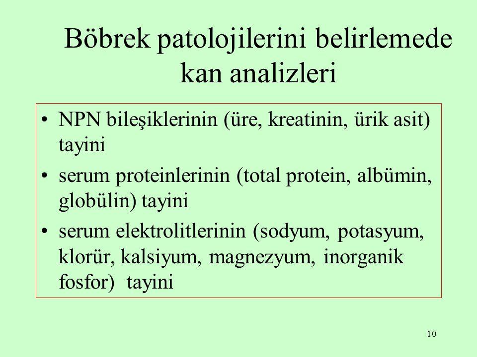 10 Böbrek patolojilerini belirlemede kan analizleri NPN bileşiklerinin (üre, kreatinin, ürik asit) tayini serum proteinlerinin (total protein, albümin, globülin) tayini serum elektrolitlerinin (sodyum, potasyum, klorür, kalsiyum, magnezyum, inorganik fosfor) tayini