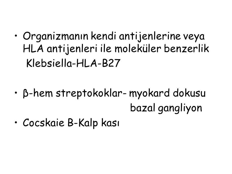 Organizmanın kendi antijenlerine veya HLA antijenleri ile moleküler benzerlik Klebsiella-HLA-B27 β-hem streptokoklar- myokard dokusu bazal gangliyon C
