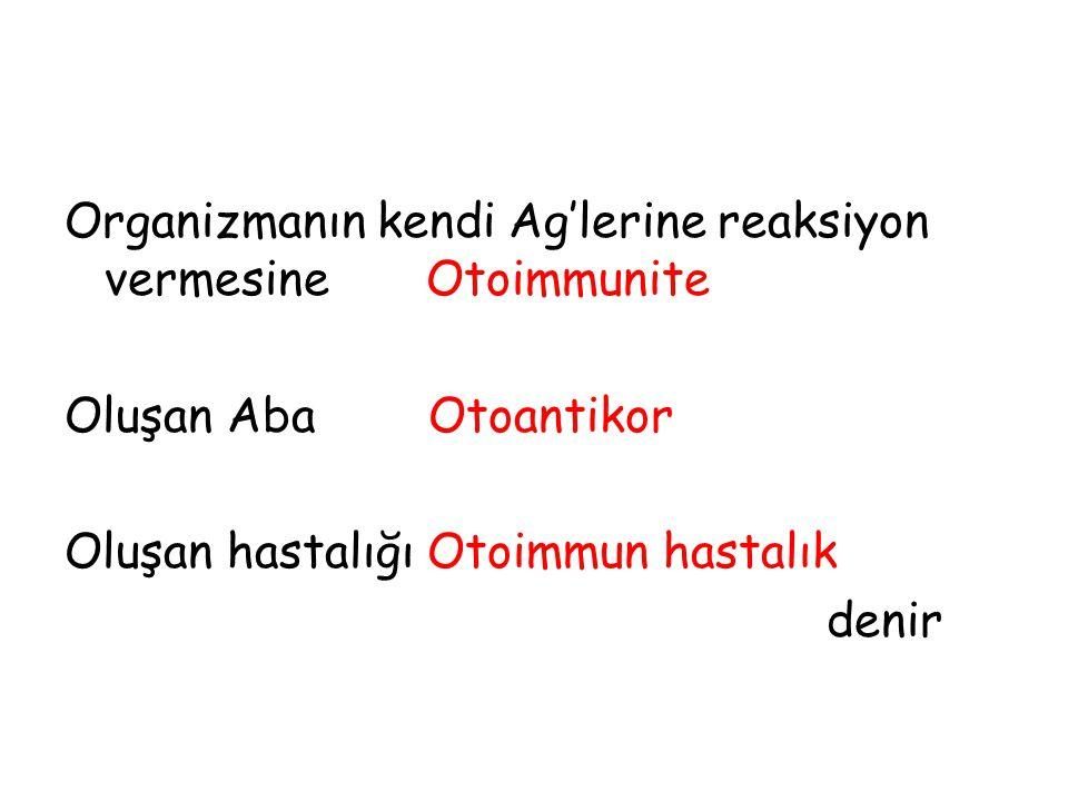 Organizmanın kendi Ag'lerine reaksiyon vermesine Otoimmunite Oluşan Aba Otoantikor Oluşan hastalığı Otoimmun hastalık denir