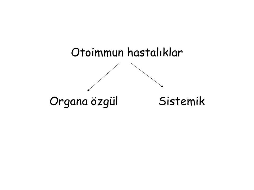 Otoimmun hastalıklar Organa özgül Sistemik