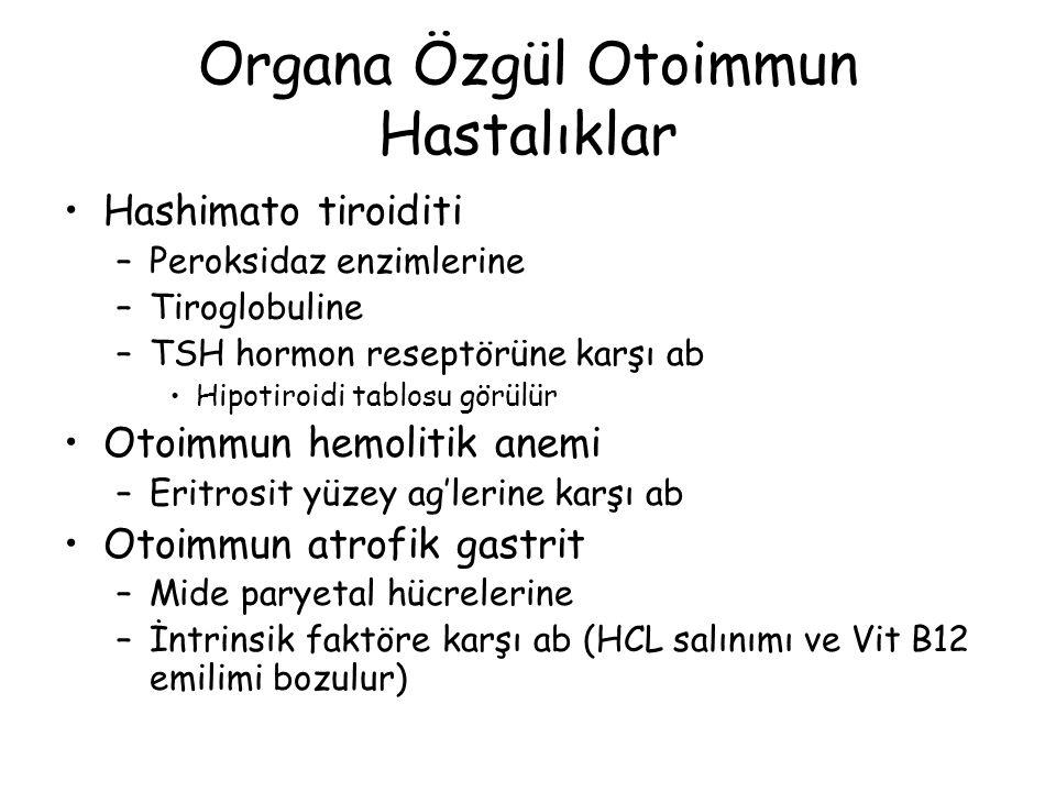Organa Özgül Otoimmun Hastalıklar Hashimato tiroiditi –Peroksidaz enzimlerine –Tiroglobuline –TSH hormon reseptörüne karşı ab Hipotiroidi tablosu görü