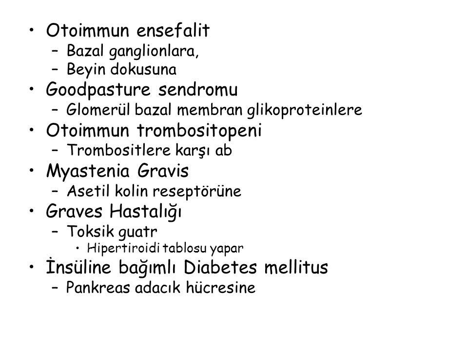 Otoimmun ensefalit –Bazal ganglionlara, –Beyin dokusuna Goodpasture sendromu –Glomerül bazal membran glikoproteinlere Otoimmun trombositopeni –Trombos