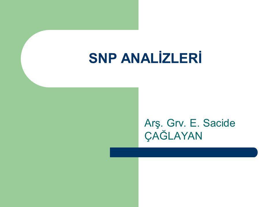 SNP ANALİZLERİ Arş. Grv. E. Sacide ÇAĞLAYAN