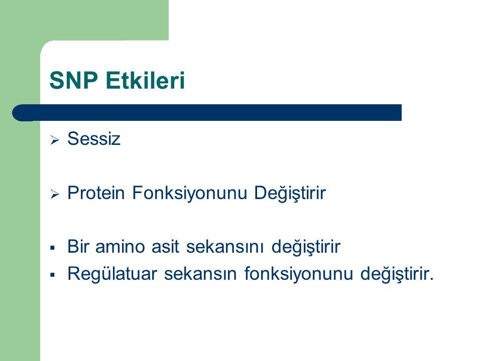 SNP Etkileri  Sessiz  Protein Fonksiyonunu Değiştirir  Bir amino asit sekansını değiştirir  Regülatuar sekansın fonksiyonunu değiştirir.