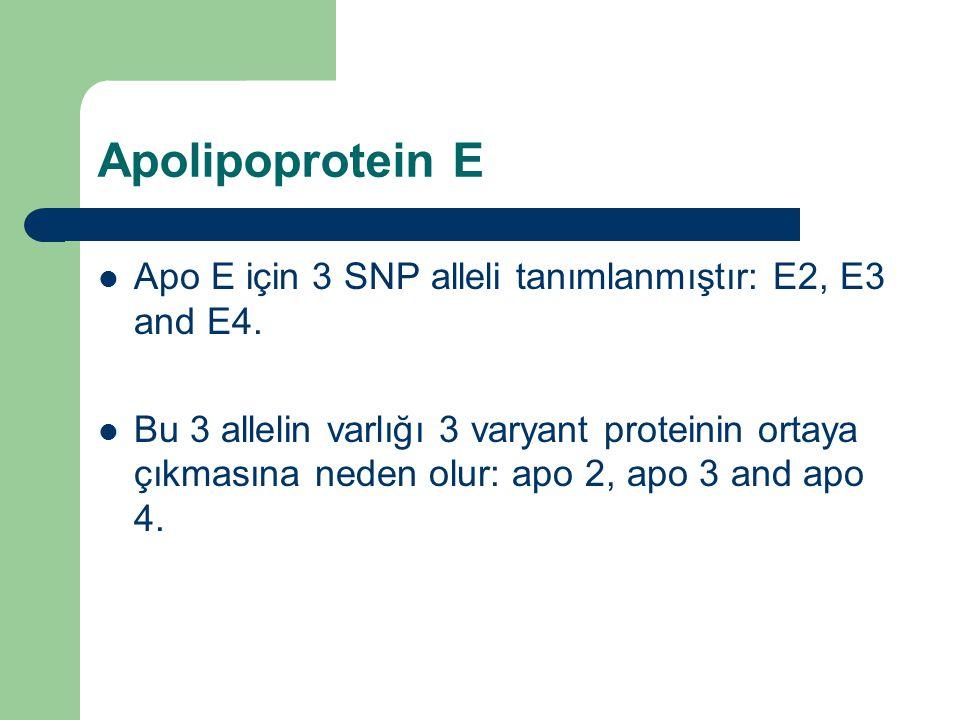 Apolipoprotein E Apo E için 3 SNP alleli tanımlanmıştır: E2, E3 and E4. Bu 3 allelin varlığı 3 varyant proteinin ortaya çıkmasına neden olur: apo 2, a