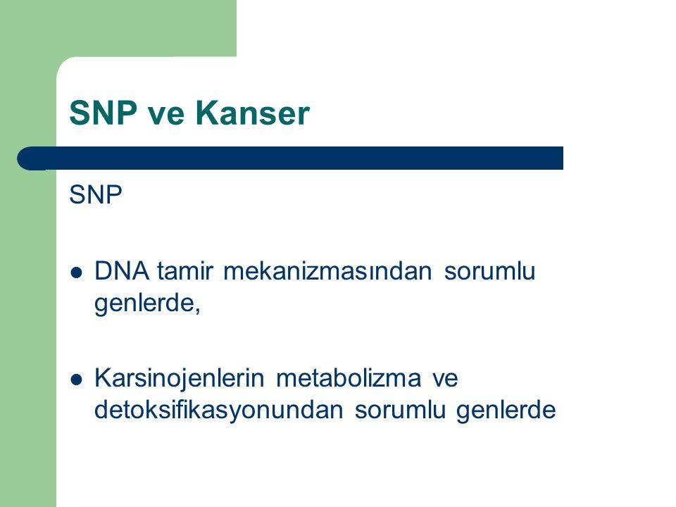 SNP ve Kanser SNP DNA tamir mekanizmasından sorumlu genlerde, Karsinojenlerin metabolizma ve detoksifikasyonundan sorumlu genlerde