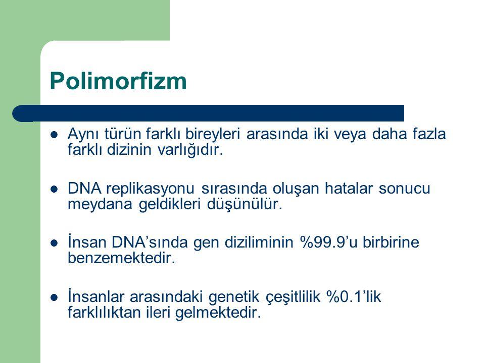 Polimorfizm Aynı türün farklı bireyleri arasında iki veya daha fazla farklı dizinin varlığıdır. DNA replikasyonu sırasında oluşan hatalar sonucu meyda