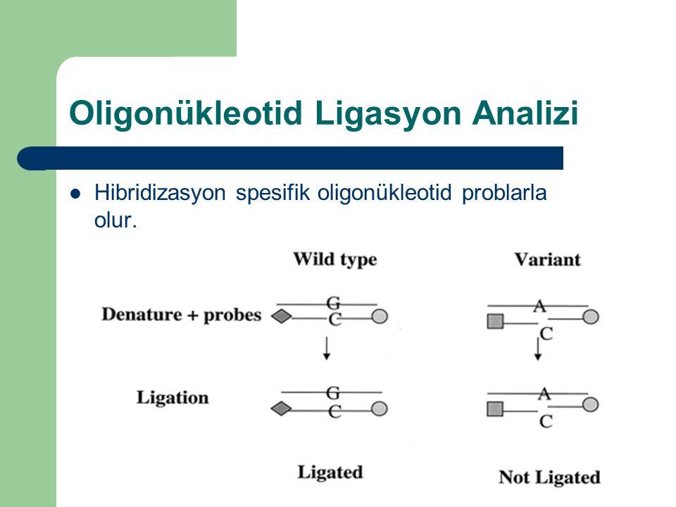 Oligonükleotid Ligasyon Analizi Hibridizasyon spesifik oligonükleotid problarla olur.