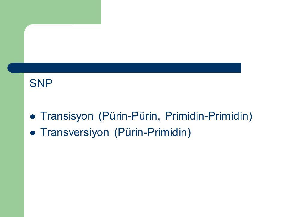 SNP Transisyon (Pürin-Pürin, Primidin-Primidin) Transversiyon (Pürin-Primidin)
