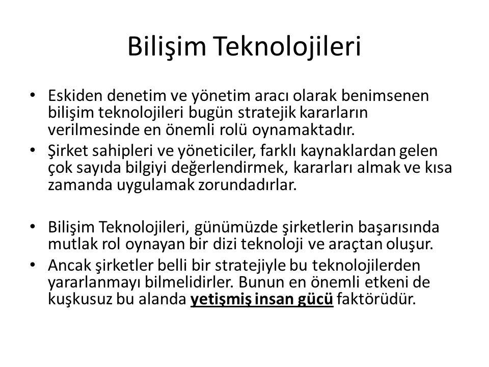 Bilişim Teknolojileri Organizasyon yapısı: Birbirine bağlı sanal ve elektronik şirket yapısını oluşturur.