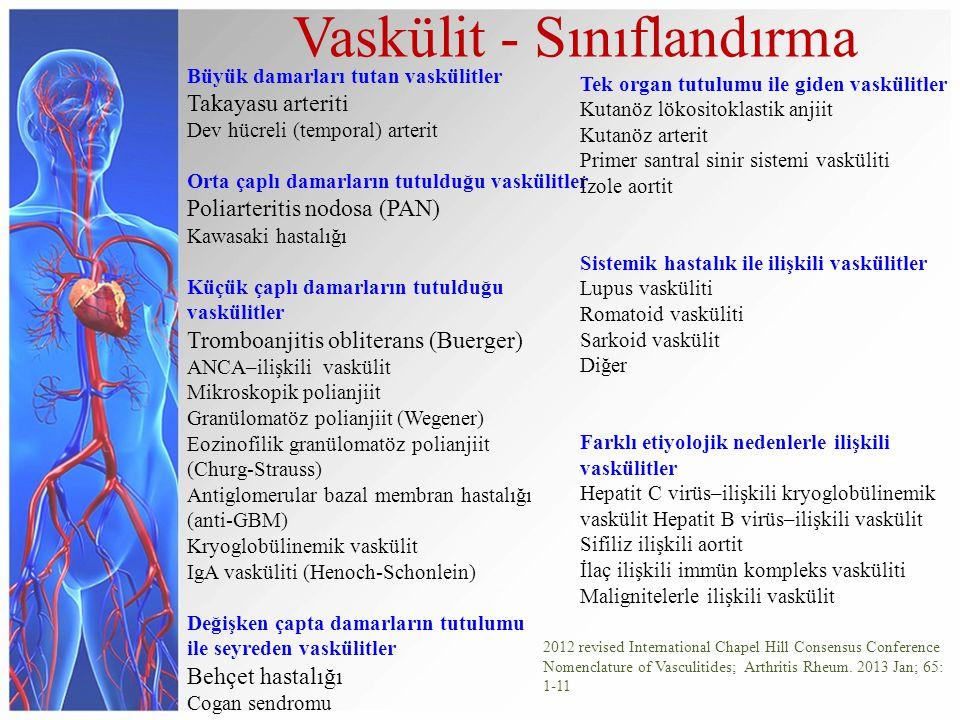 Büyük damarları tutan vaskülitler Takayasu arteriti Dev hücreli (temporal) arterit Orta çaplı damarların tutulduğu vaskülitler Poliarteritis nodosa (P