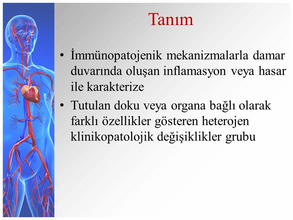 Tanım İmmünopatojenik mekanizmalarla damar duvarında oluşan inflamasyon veya hasar ile karakterize Tutulan doku veya organa bağlı olarak farklı özellikler gösteren heterojen klinikopatolojik değişiklikler grubu