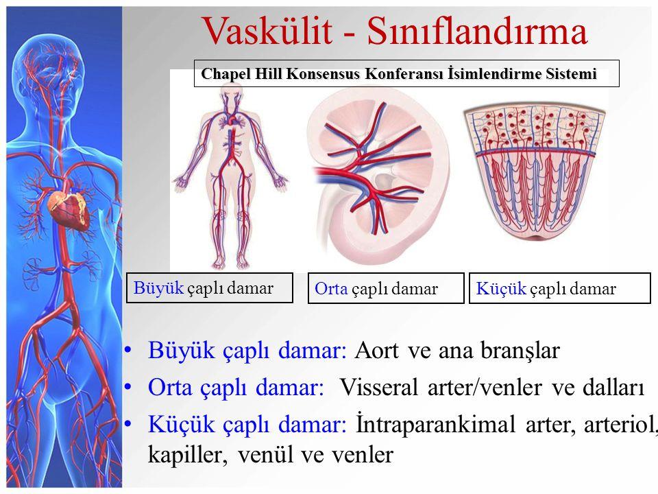 Büyük çaplı damar Vaskülit - Sınıflandırma Orta çaplı damarKüçük çaplı damar Büyük çaplı damar: Aort ve ana branşlar Orta çaplı damar: Visseral arter/venler ve dalları Küçük çaplı damar: İntraparankimal arter, arteriol, kapiller, venül ve venler Chapel Hill Konsensus Konferansı İsimlendirme Sistemi