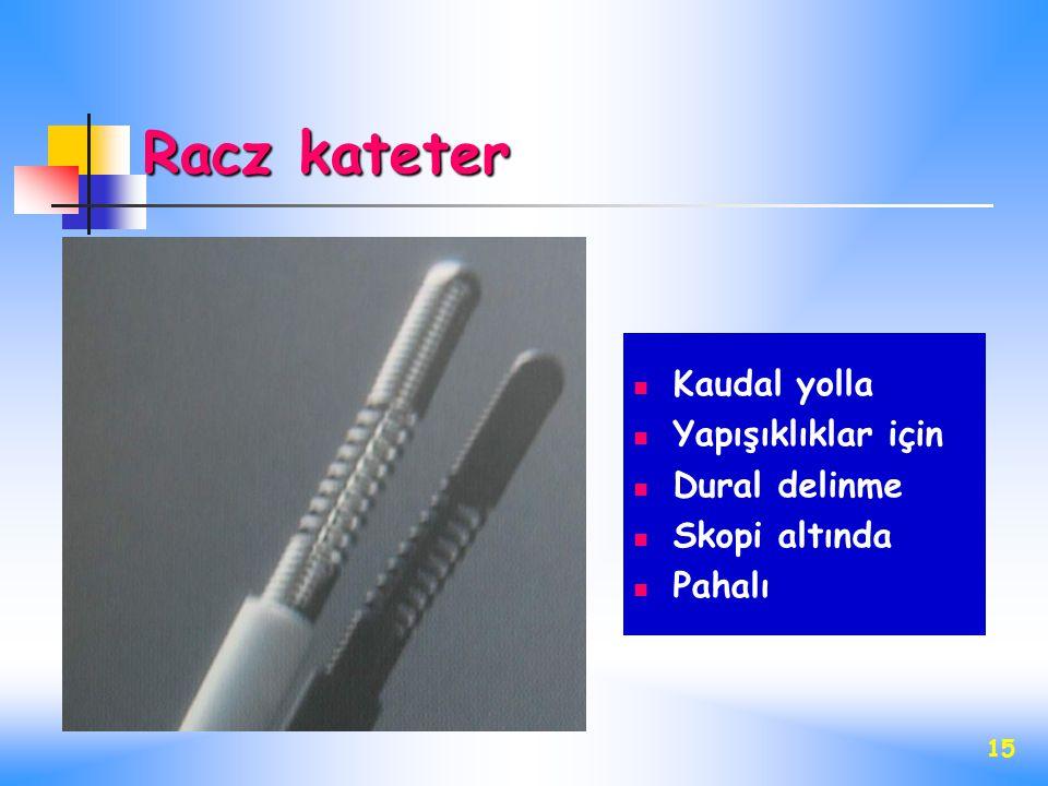 15 Racz kateter Kaudal yolla Yapışıklıklar için Dural delinme Skopi altında Pahalı