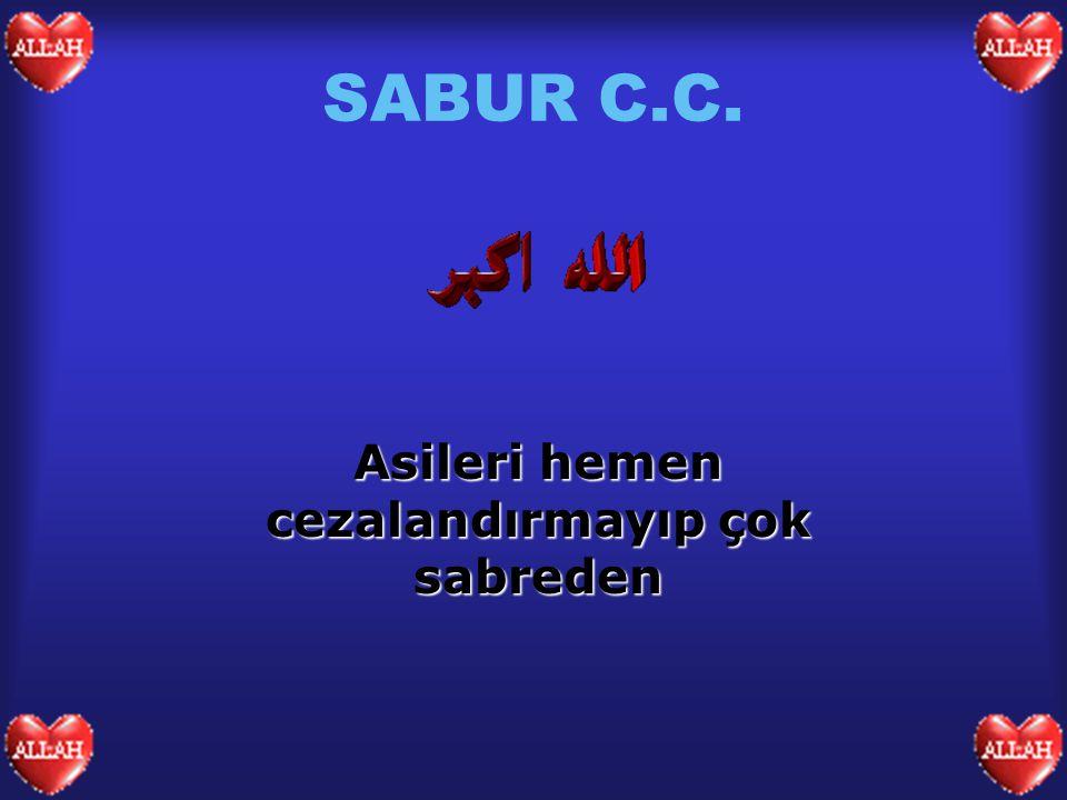 SABUR C.C. Asileri hemen cezalandırmayıp çok sabreden