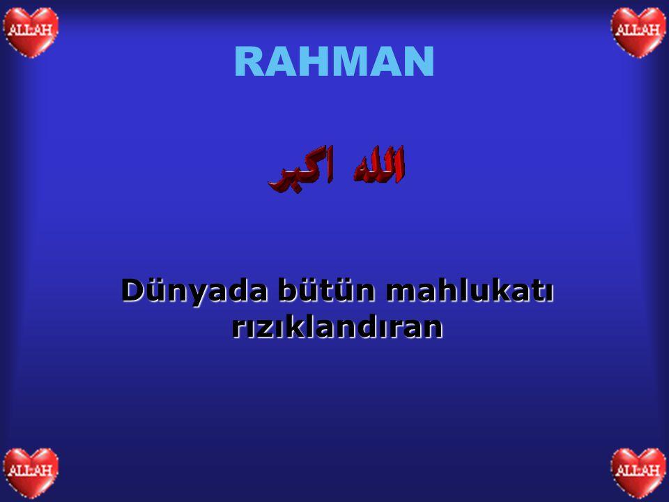 RAHMAN Dünyada bütün mahlukatı rızıklandıran