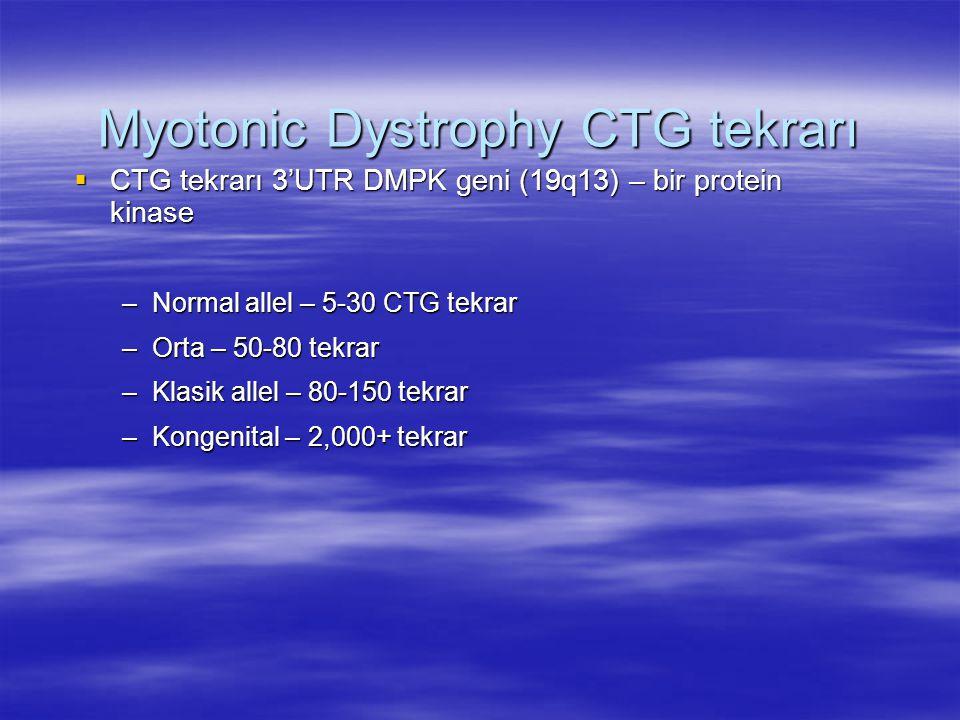  CTG tekrarı 3'UTR DMPK geni (19q13) – bir protein kinase –Normal allel – 5-30 CTG tekrar –Orta – 50-80 tekrar –Klasik allel – 80-150 tekrar –Kongenital – 2,000+ tekrar Myotonic Dystrophy CTG tekrarı