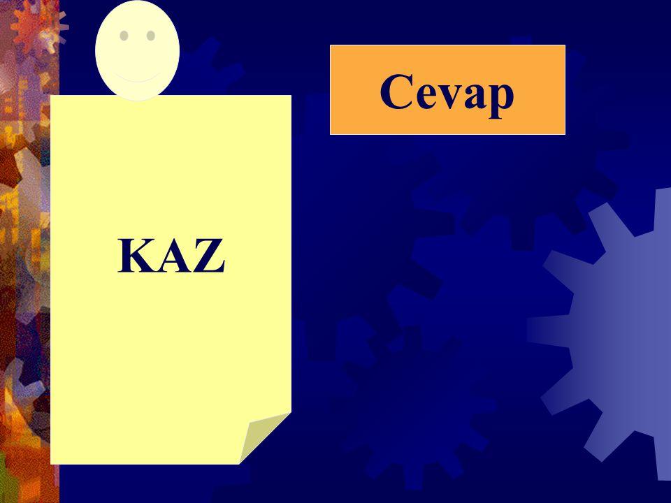 KAZ Cevap
