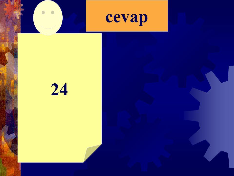 24 cevap