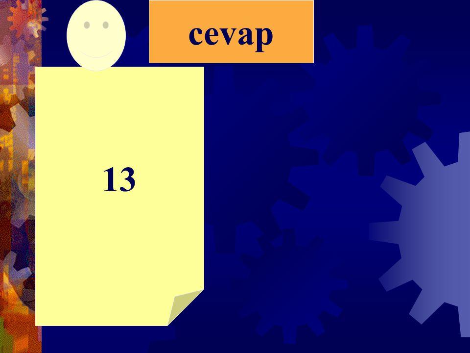 13 cevap