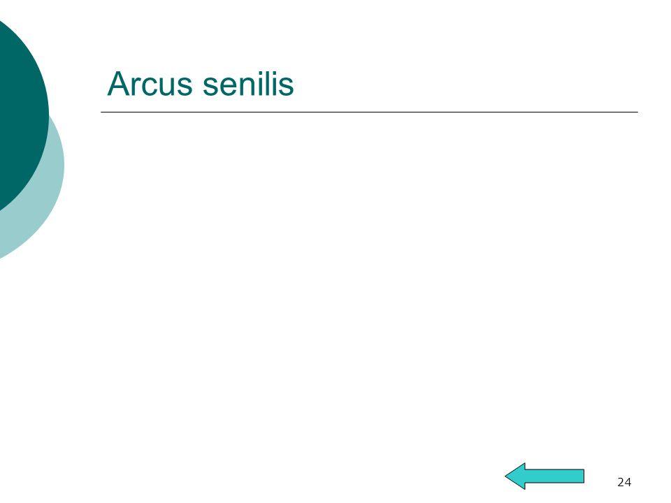 24 Arcus senilis
