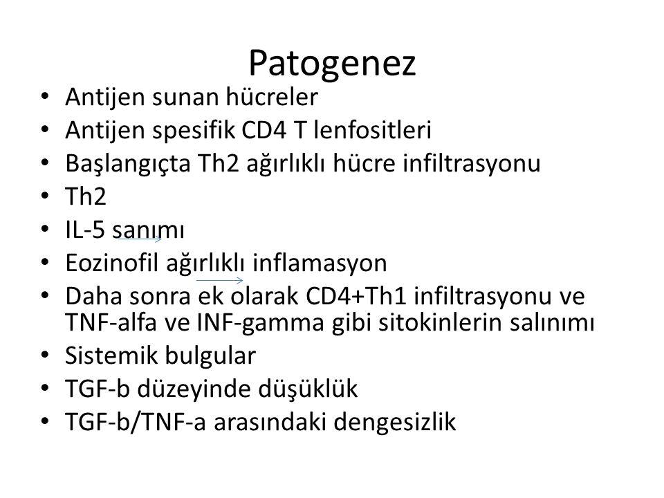 Patogenez Antijen sunan hücreler Antijen spesifik CD4 T lenfositleri Başlangıçta Th2 ağırlıklı hücre infiltrasyonu Th2 IL-5 sanımı Eozinofil ağırlıklı