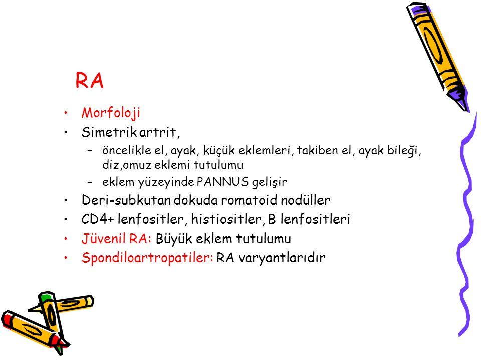 RA Morfoloji Simetrik artrit, –öncelikle el, ayak, küçük eklemleri, takiben el, ayak bileği, diz,omuz eklemi tutulumu –eklem yüzeyinde PANNUS gelişir Deri-subkutan dokuda romatoid nodüller CD4+ lenfositler, histiositler, B lenfositleri Jüvenil RA: Büyük eklem tutulumu Spondiloartropatiler: RA varyantlarıdır