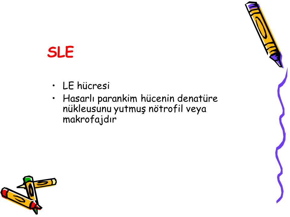 SLE LE hücresi Hasarlı parankim hücenin denatüre nükleusunu yutmuş nötrofil veya makrofajdır