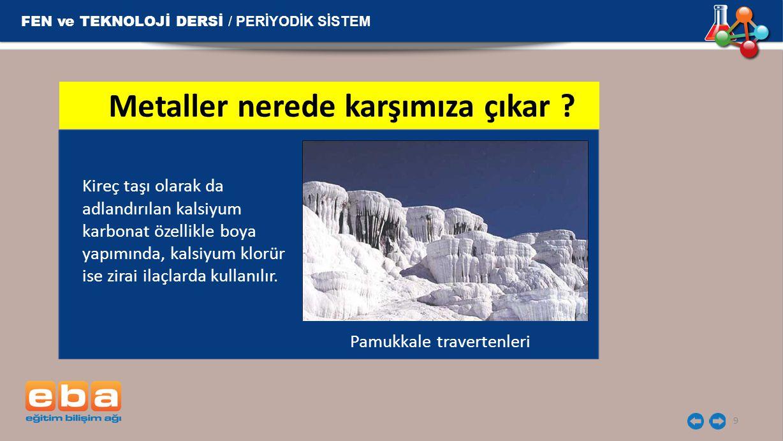 FEN ve TEKNOLOJİ DERSİ / PERİYODİK SİSTEM 10 Kalsiyum ayrıca kemik gelişimi için önemli bir mineraldir.
