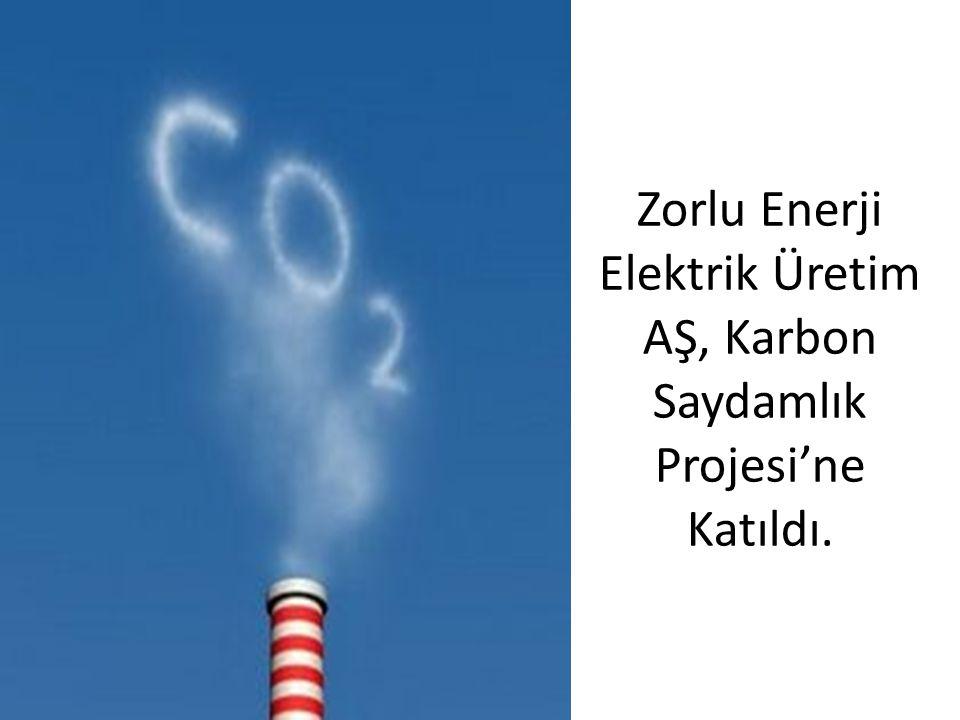 Zorlu Enerji Elektrik Üretim AŞ, Karbon Saydamlık Projesi'ne Katıldı.