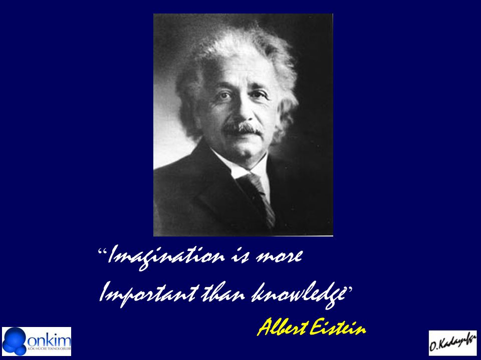 I magination is more Important than knowledge Albert Eistein