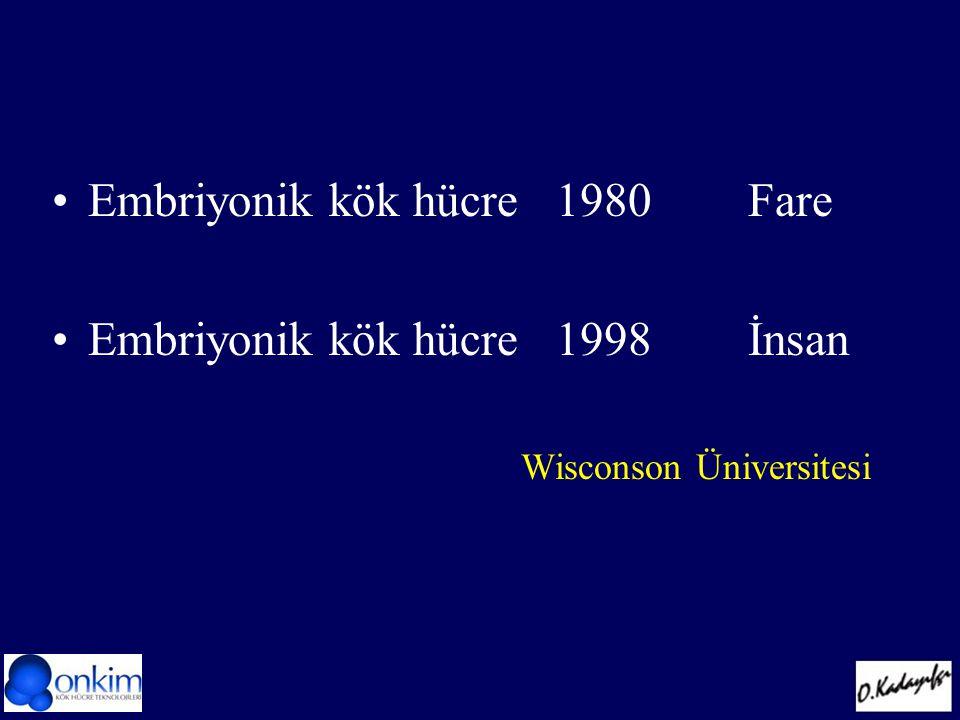 Embriyonik kök hücre 1980 Fare Embriyonik kök hücre 1998 İnsan Wisconson Üniversitesi