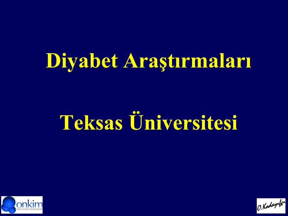 Diyabet Araştırmaları Teksas Üniversitesi