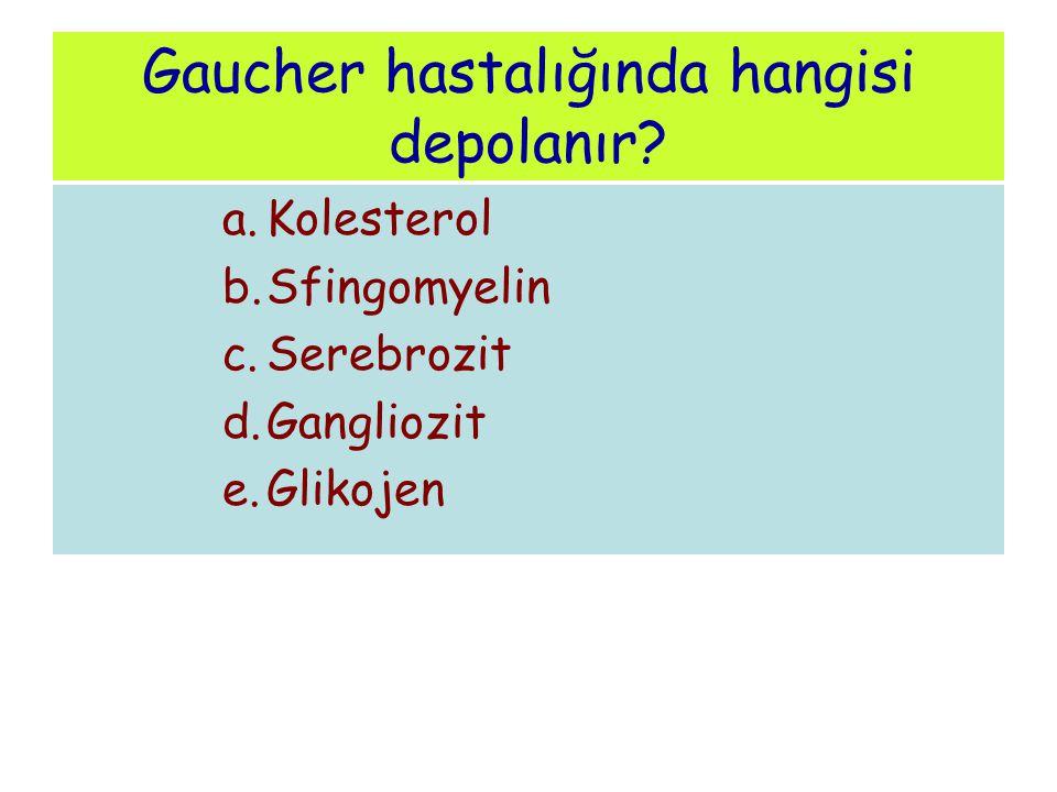 Gaucher hastalığında hangisi depolanır? a.Kolesterol b.Sfingomyelin c.Serebrozit d.Gangliozit e.Glikojen