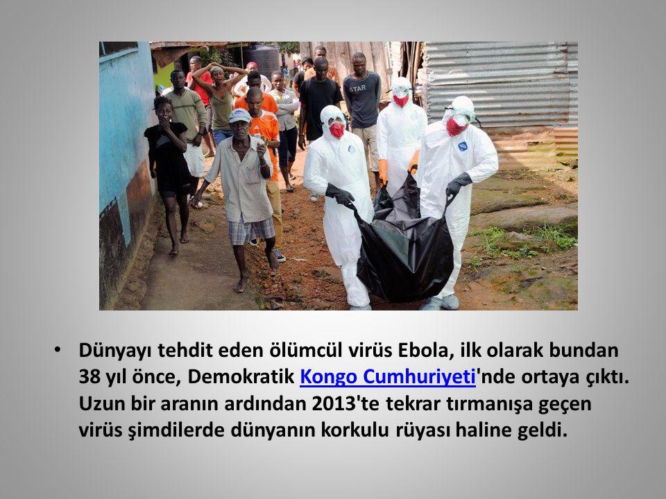Dünyayı tehdit eden ölümcül virüs Ebola, ilk olarak bundan 38 yıl önce, Demokratik Kongo Cumhuriyeti'nde ortaya çıktı. Uzun bir aranın ardından 2013't